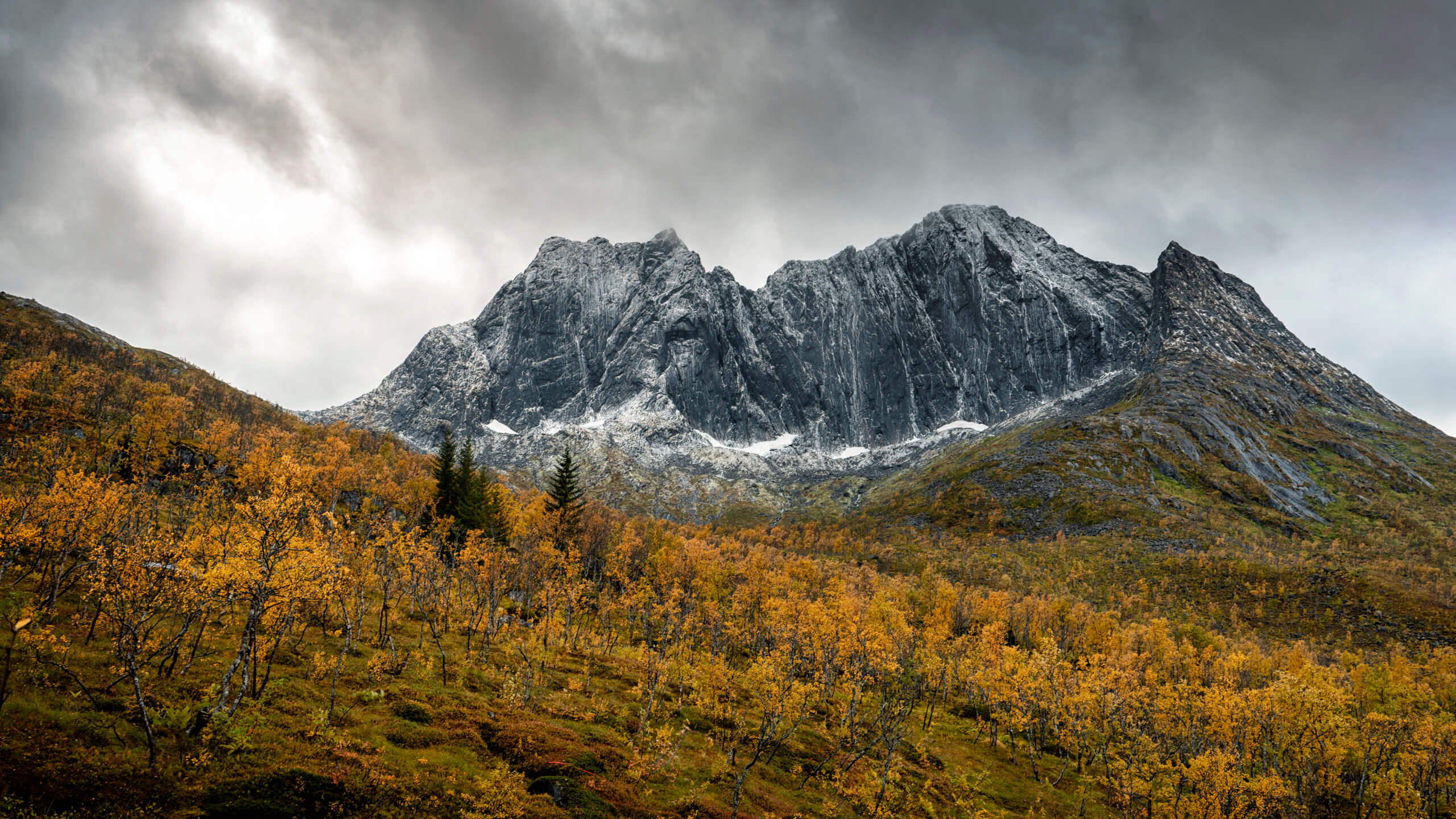 Mountains and autumn colors in Fjordgard Senja, by Joakim Jormelin