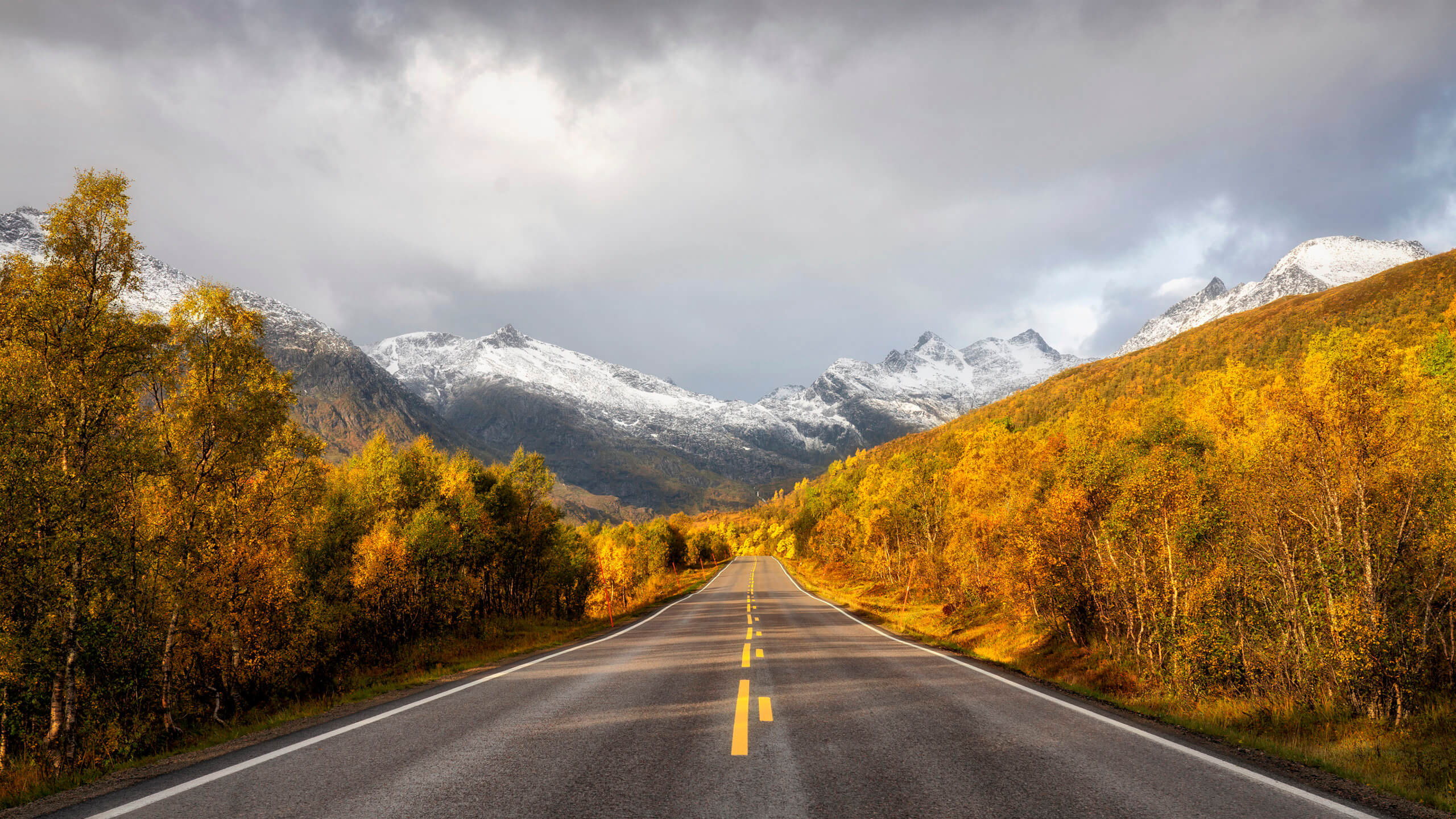 Scenic road in Norway - Photo by Joakim Jormelin